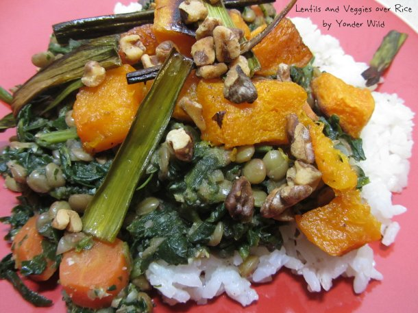 lentils with veggie and rice