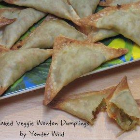 Baked Veggie WontonDumplings