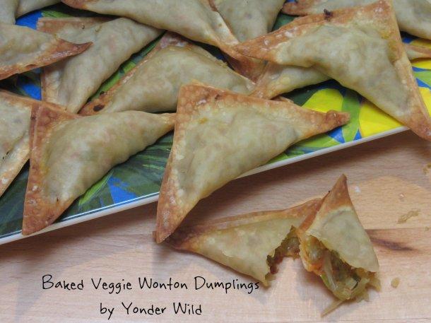 Wonton Dumplings