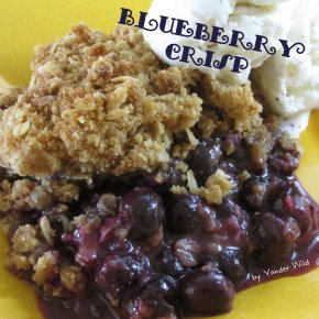 Blueberry Crisp – a Simple Summer Pleaser