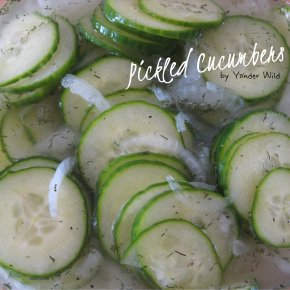 Pickled Cucumbers – the Condiment that Preserves