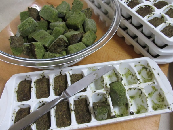 Remove Pesto Cubes from the trays