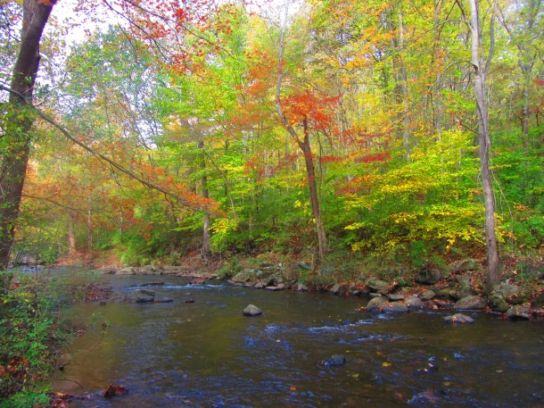 Colors on the riverbed